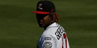vladimir guerrero jr florida state league