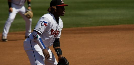 vladimir-guerrero-jr-expectations